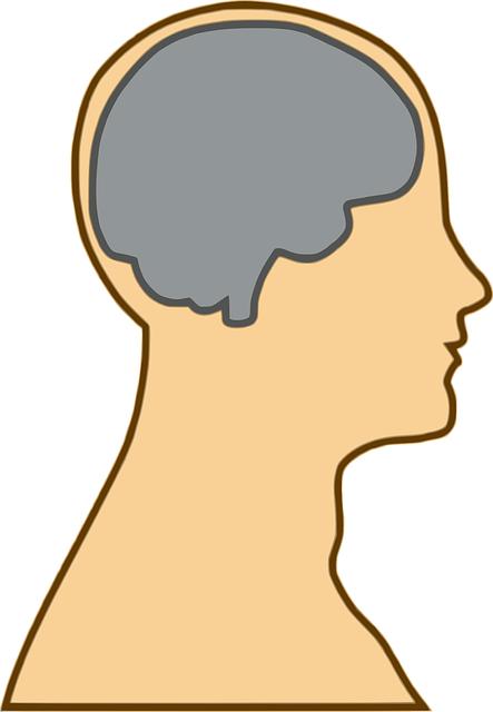 英語学習時の小学生の脳活動に男女差