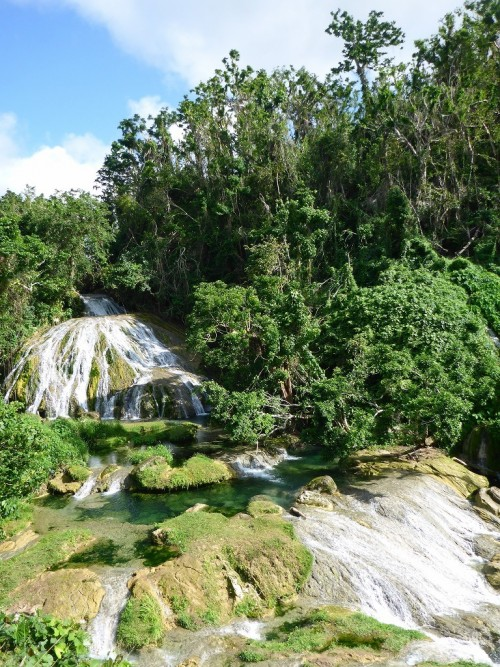 ロロリマの滝4