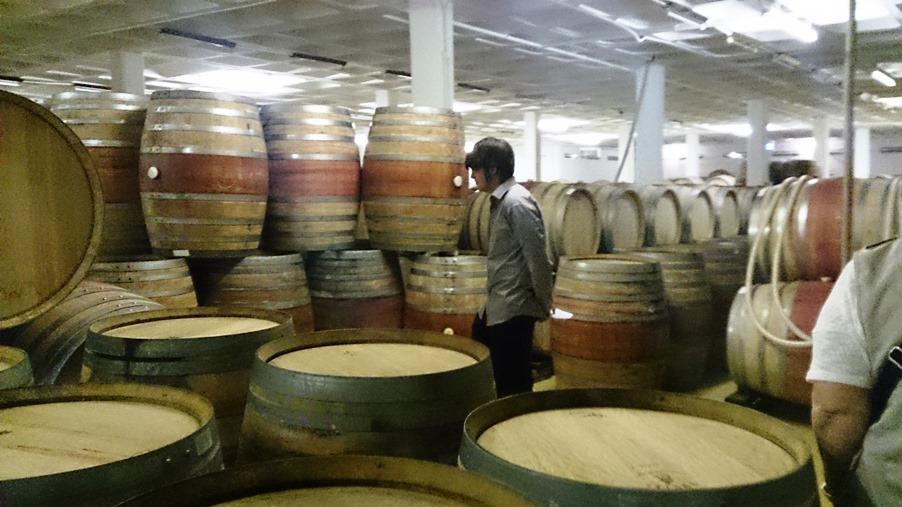 ワインの保管庫2