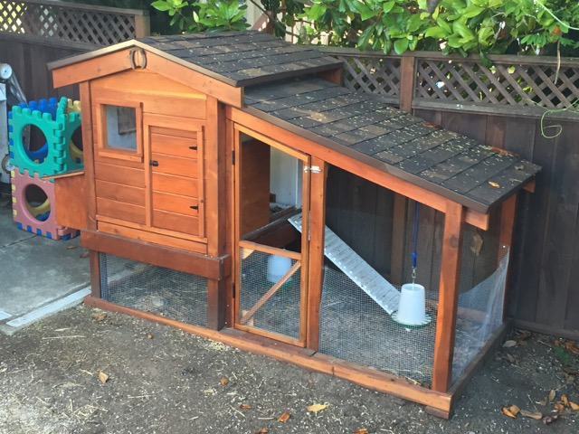 chicken coop pic.1