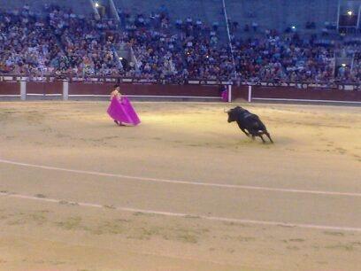 スペインの闘牛