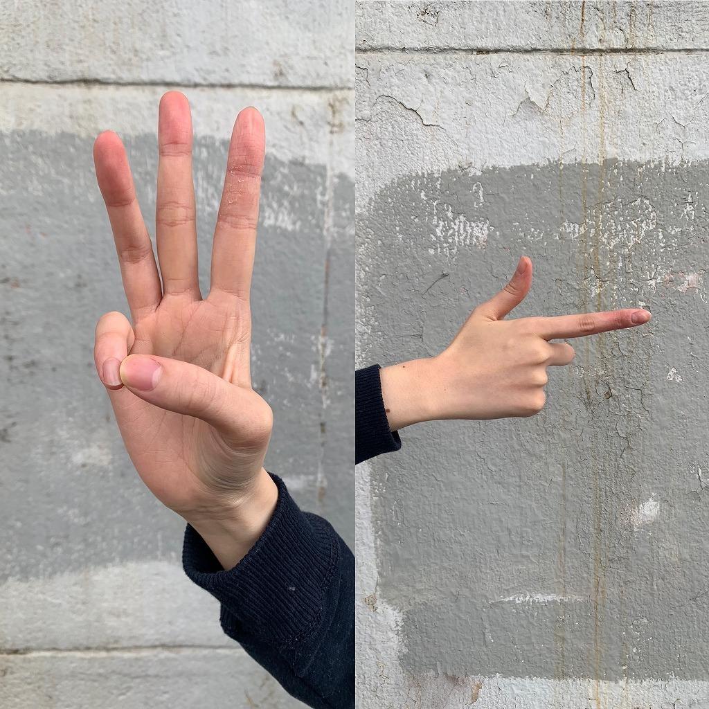 アメリカ手話の6(左)と日本手話の6(右)